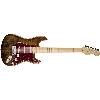 FENDER CUSTOM SHOP STRATOCASTER TOP ARTISAN STRATO SPALTED MAPLE BUCKEYE - 1510112151