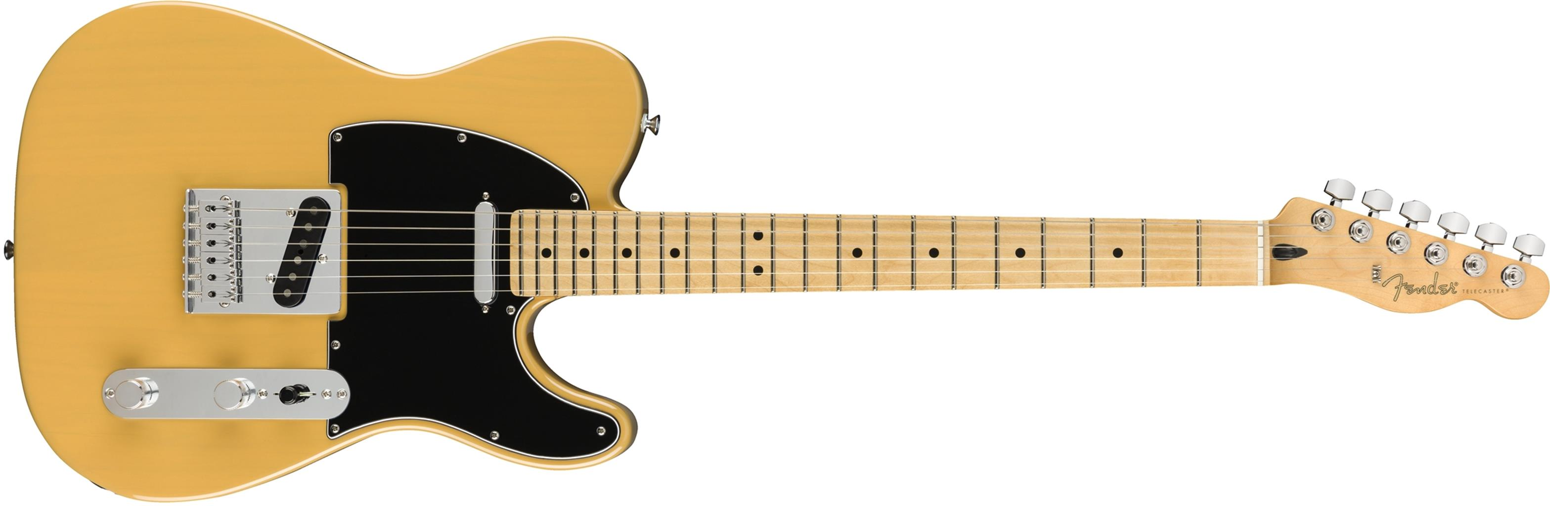 FENDER Player Telecaster Butterscotch Blonde MN  0145212550