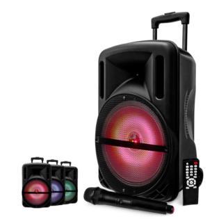 Karma DJOON - Diffusore amplificato con radiomicrofono 100W - Voce - Audio Casse e Monitor - Diffusori Passivi